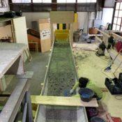 Costruzione della rampa a monte per il primo esperimento
