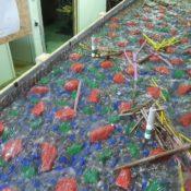 Deposito materiale flottante presso le pile